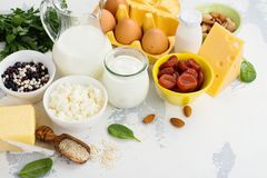 Food rich of calcium. Group of products rich of calcium. Healthy food background. Selective focus. Space for text Stock Image