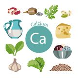 Food rich with calcium. A set of organic organic foods with a high content of vitamin Royalty Free Illustration