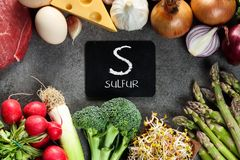 Free Food Rich In Sulfur Royalty Free Stock Photo - 144598775