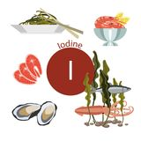 Food rich with iodine. A set of organic organic foods with a high mineral content Vector Illustration