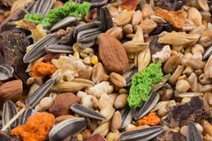 Food for rodents. Healthy food background, texture. Food of dry compound for hamsters, rats, chinchillas, mice, squirrels. royalty free stock images