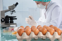 Food safety concept Stock Images