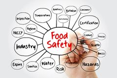 Free Food Safety Mind Map Flowchart With Marker, Concept For Presentations And Reports Royalty Free Stock Photography - 198601357