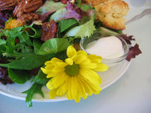 Food - Salad. Pecan green salad with mixed lettuce leaves, scone, cream and a beautiful yellow flower / daisy stock images