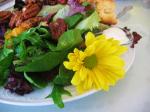 Salad Food. Pecan green salad with mixed lettuce leaves, scone, cream and a beautiful yellow flower / daisy royalty free stock photos