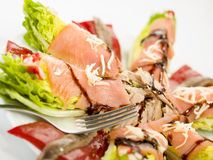 Food salmon anchovy salad Stock Images