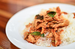 Food. Savory curry with pig on disc Stock Photography