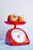 Food Scales Royalty Free Stock Photos