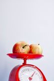 Food Scales Royalty Free Stock Images