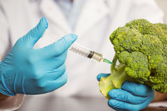 Food scientist injecting head of broccoli Stock Photo