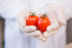 Food scientist showing tomatoes Stock Photo