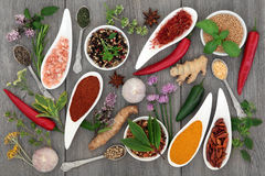 Food Seasoning with Herbs and Spices Stock Photo