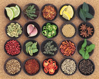 Food Seasoning Sampler Royalty Free Stock Photography