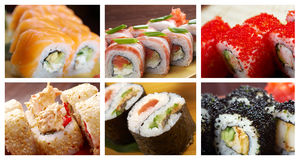 Food set Japanese Cuisine - Sushi Roll. Food set of different Japanese Cuisine - Sushi Roll . collage Royalty Free Stock Photography
