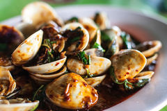 Food of shell  thailand Royalty Free Stock Photo