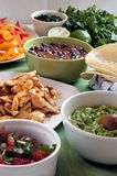 Food shot. Every ingredients, meat, vegetables and tortillas, to fill up a burrito Royalty Free Stock Photo
