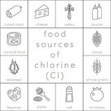 Food sources of chlorine. Outline food icons for infographic Stock Photo