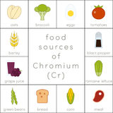 Food sources of chromium. Flat food icons for infographic Stock Images
