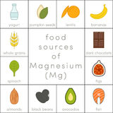 Food sources of magnesium Royalty Free Stock Image