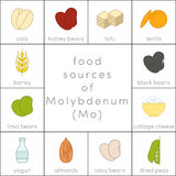 Food sources of molybdenum Stock Image