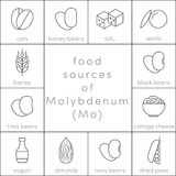 Food sources of molybdenum Royalty Free Stock Images