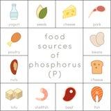 Food sources of phosphorus Stock Photos