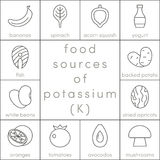 Food sources of potassium. Outline food icons for infographic Royalty Free Stock Image