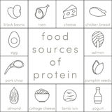 Food sources of protein Royalty Free Stock Image