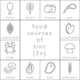 Food sources of zinc. Outline food icons for infographic Royalty Free Stock Photography