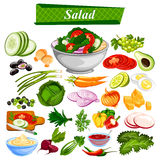 Food and Spice ingredient for Healthy Salad Stock Images
