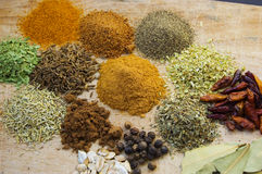 Food spices. Different kind of indian spices like oregano,pepper,chili, cinnamon,nutmeg,tarragon,basil Stock Image