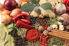 Food - spices and herbs Stock Photos