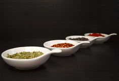 Food Spices. 4 modern white dishes. Each holding a different spice in each royalty free stock photography