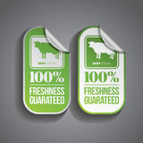 Food Sticker Beef. Beef steak food sticker with 100% freshness guaranteed stamp Royalty Free Stock Photos