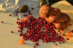 Raw cranberries in food still life Royalty Free Stock Photography