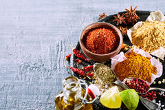 Food still life with a variety of Asian spices Royalty Free Stock Images