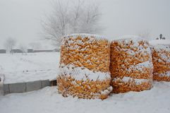 The food stored in winter Stock Photos