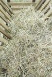 Food straw Stock Image