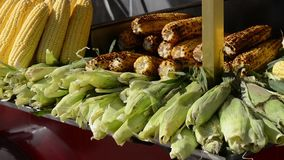 Turkey. Istanbul. fried chestnuts. corn. Food, street traditional istanbul people turkish stock video footage