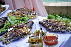 FOOD TEST. Fish braised with well seasoned paste and decorated with vegetables for food quality test exposure before consumption royalty free stock images