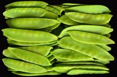 Snow Peas Royalty Free Stock Photo