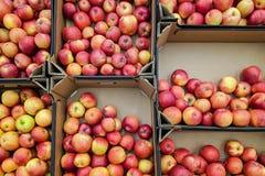 Food texture royalty free stock photos