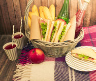 Food and things for a picnic Stock Photos