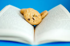 Food for thoughts, cookies on a book. Conceptual shot depicting books are the mind's food royalty free stock photography