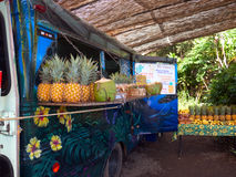 Food truck in Maui Hawaii. This hippie food truck is always a good place to stop and share stories. Selling only fruits juices and smoothies made of the royalty free stock photo
