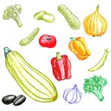 Food vector elements Royalty Free Stock Photo