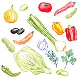 Food vector elements Royalty Free Stock Image