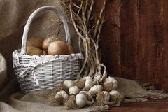 Food. Vegetables and garlic in daylight photographed basket Royalty Free Stock Photography