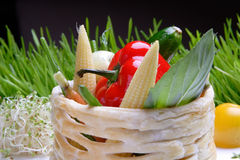 Food, Vegetables Grill Stock Images
