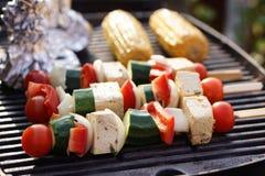 Food: Vegetarian Barbecue, vegetables and tofu kebabs Stock Image